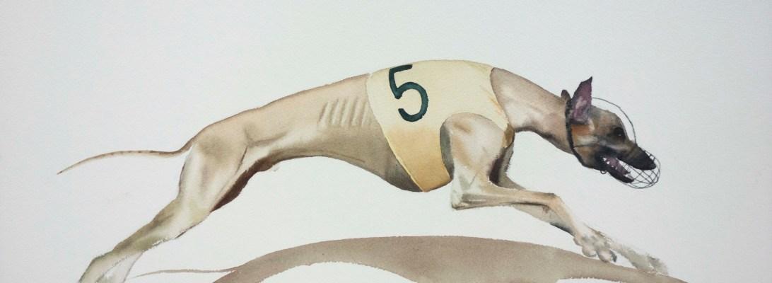 Dog sprint