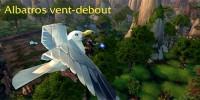 mop-patch54-ile-temps-fige-albatros-vent-debout-02