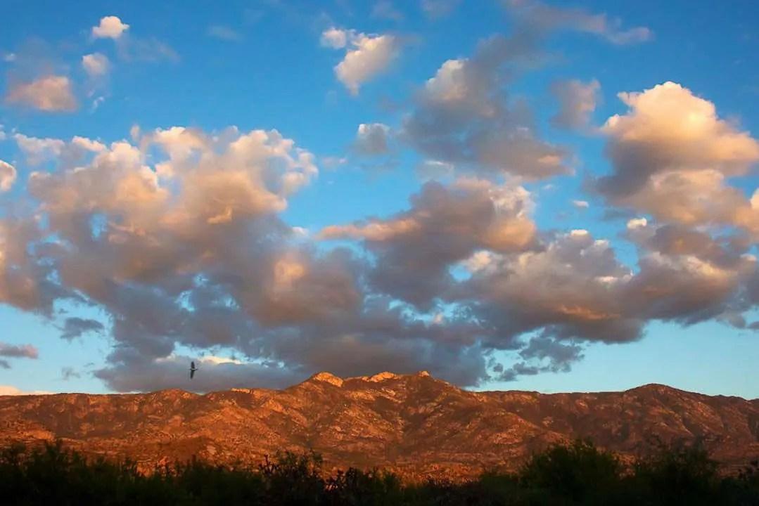 Samaniego Ridge Sunset