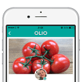 Free Food App