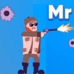 MR Funny Bullet