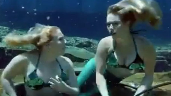 r-weeki-wachee-mermaids-2_1514493582645.jpg