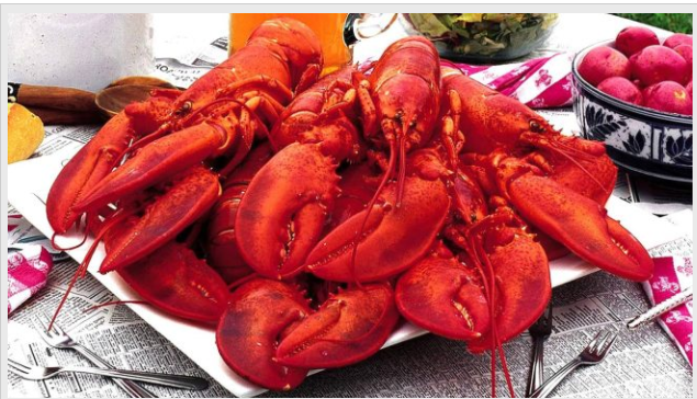 Lobster_1515891948174.PNG