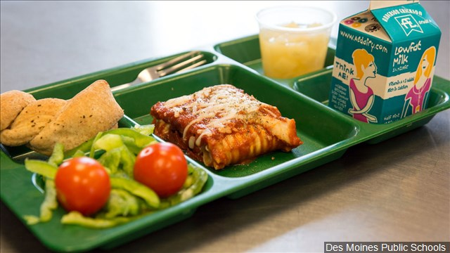 School lunch_1528214978054.jpg.jpg