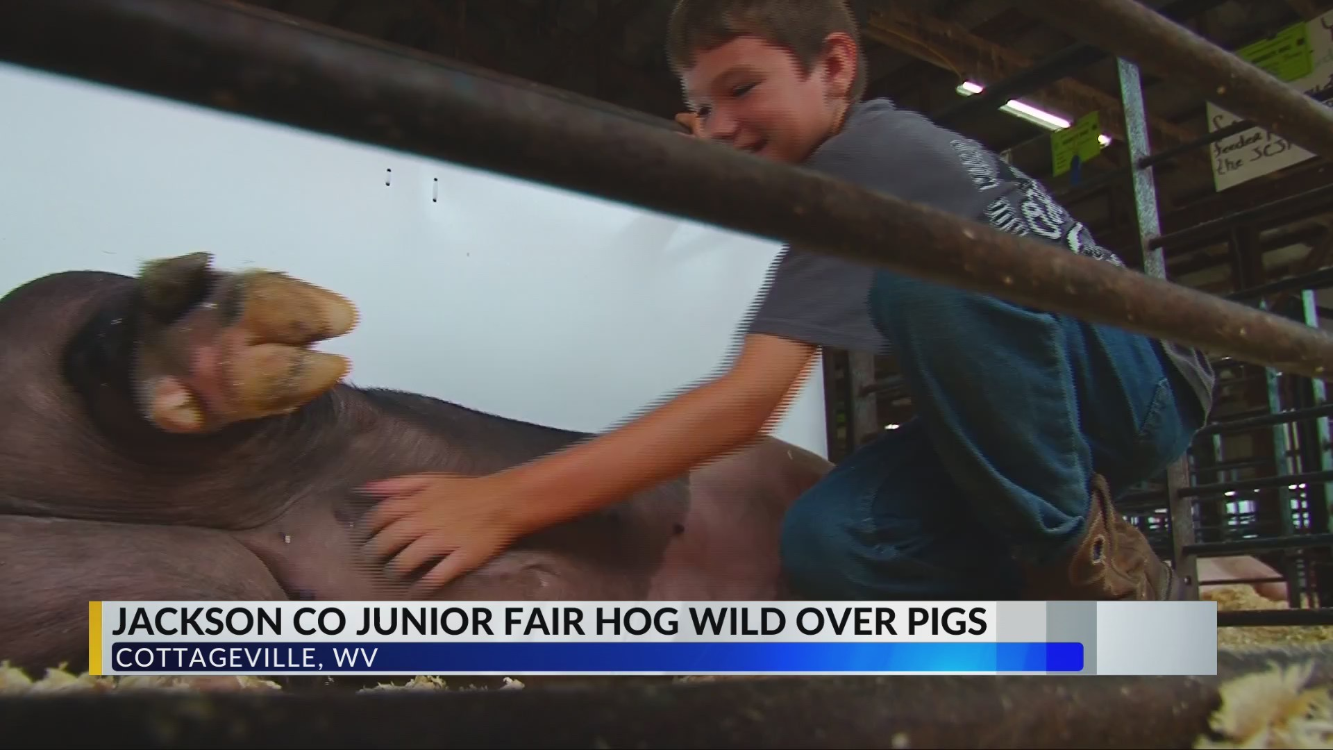 Hundreds Attend Jackson County Junior Fair For Livestock Bidding