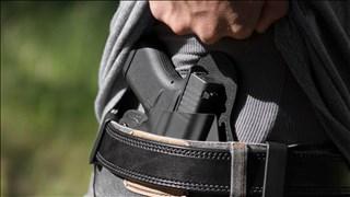 conceal carry gun_1533315927623.jpg-794283017.jpg