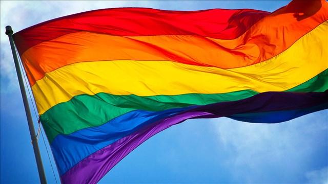 Rainbow flag Pride flag_1528993811116.jpg.jpg