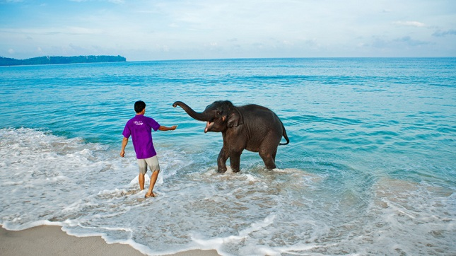 Things to do in Andaman