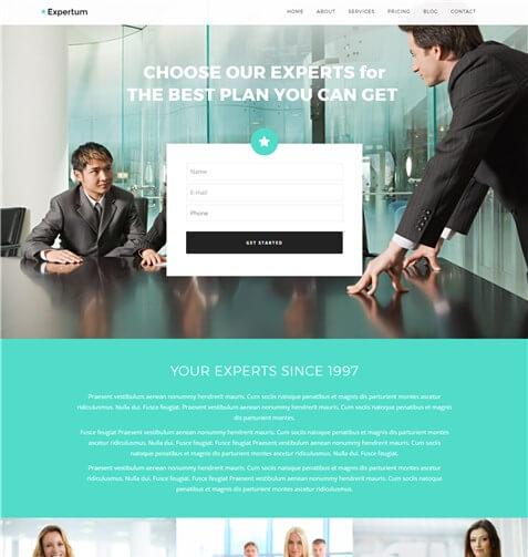 Expertum WordPress Theme