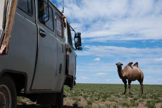 Incontri viaggiando su uno Uaz nel deserto del Gobi