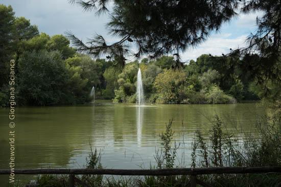 Laghetto e fontane nella riserva d'Annunziana, a Pescara