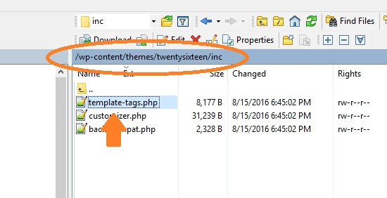 function in template tags php