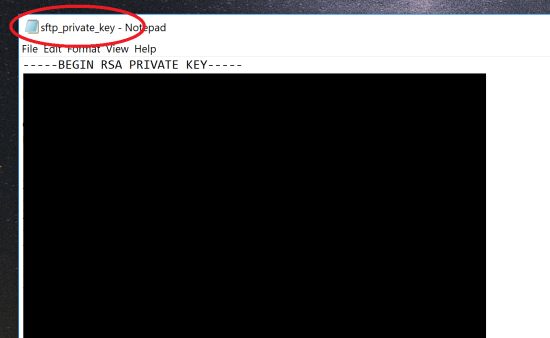 Save Private Key in Notepad