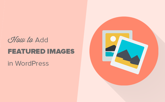 Adding featured images in WordPress