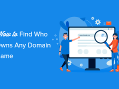 How to Find Out Who Actually Owns a Domain Name? (3 Ways)