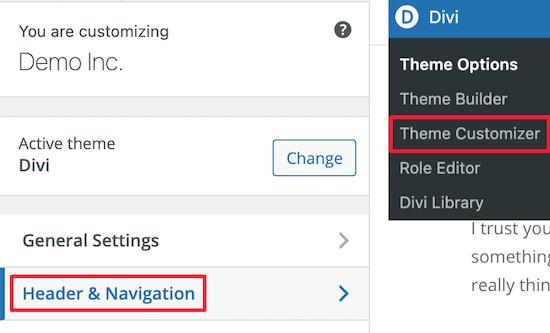 Select Divi theme customizer