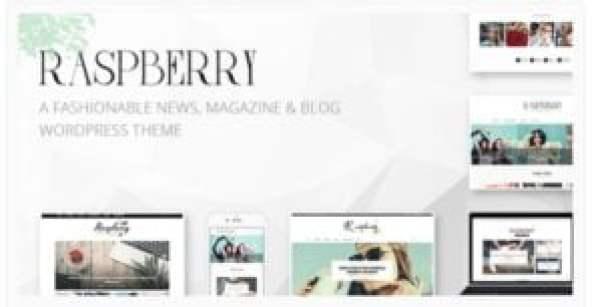 Tema WordPress Raspberry
