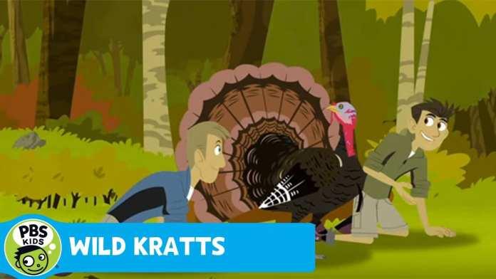 WILD KRATTS | Activate Turkey Power! | PBS KIDS