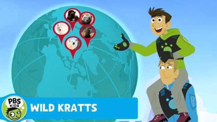 WILD KRATTS | Penguin Study | PBS KIDS