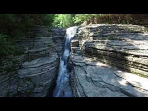 Whitaker Falls | Park It! Explore the Outdoors | WPBS Short Flix