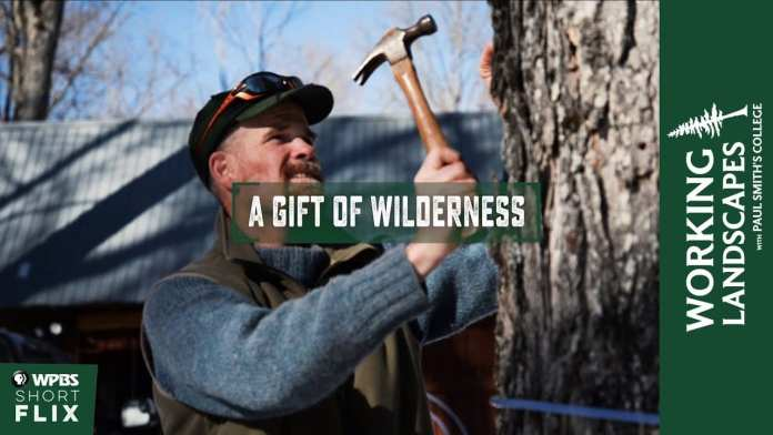 A Gift of WIlderness | Working Landscapes with Paul Smith's College  | WPBS Short Flix