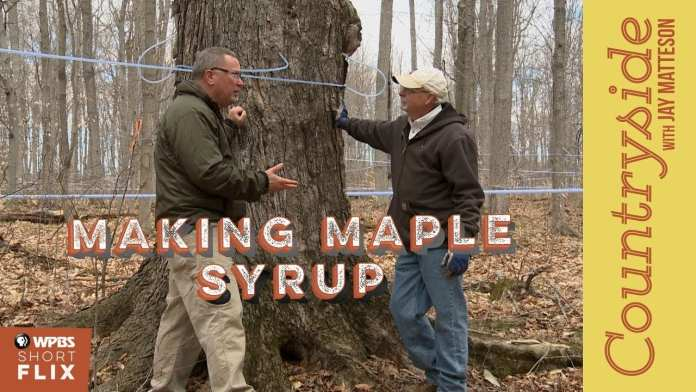 Making Maple Syrup   Countryside with Jay Matteson   WPBS Short Flix