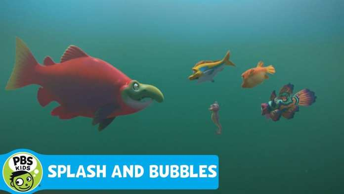 SPLASH AND BUBBLES | Meet Sal | PBS KIDS