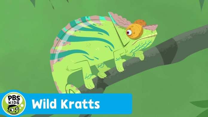 WILD KRATTS | Chameleon Camouflage | PBS KIDS