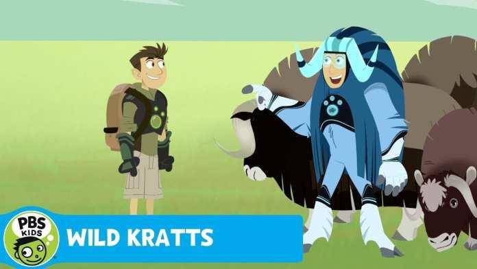 WILD KRATTS | Headbutt Fight | PBS KIDS