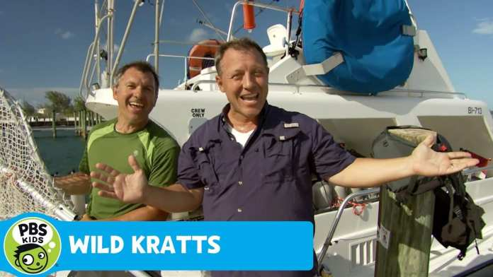 WILD KRATTS | Carribean Sea! | PBS KIDS