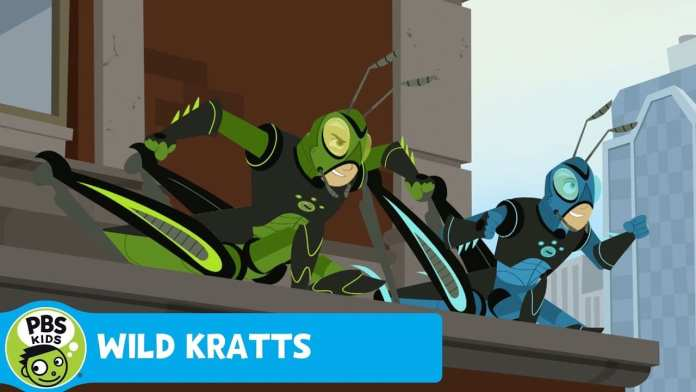 WILD KRATTS | Meeting! | PBS KIDS