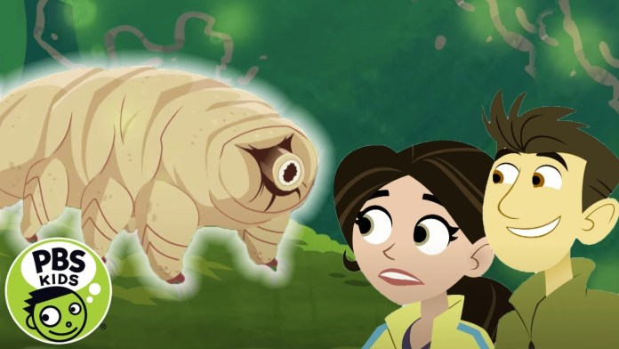 Wild Kratts | Meet the Tiny Tardigrade! | PBS KIDS