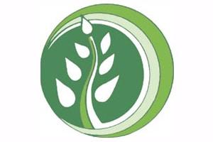 SP logo holyoke