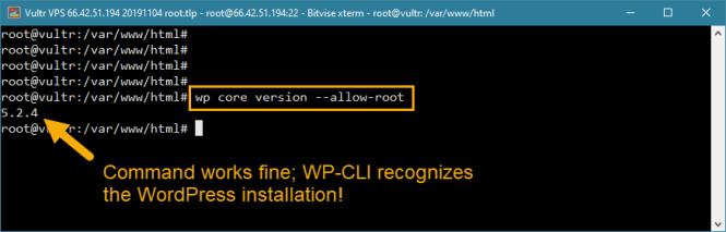 solution d'erreur d'accès root wp-cli wordpress