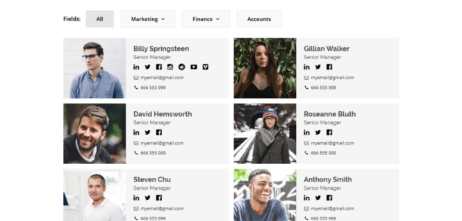 Plugin WordPress Premium pour Modern Team Showcase
