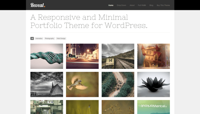Thème WordPress Premium de Reveal Porfolio sensible