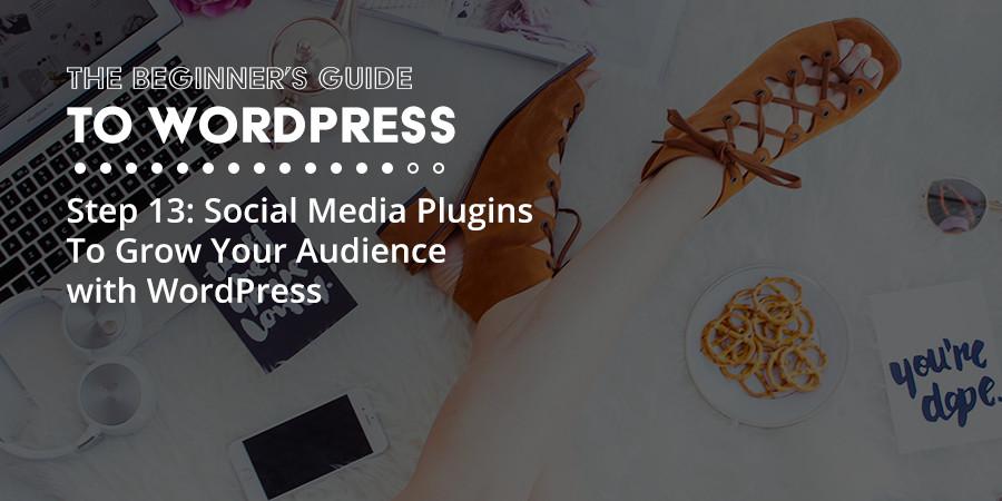Social Media WordPress Plugins to Grow Your Audience