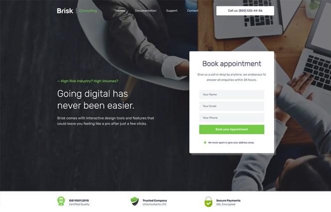 Thème WordPress Brisk Elementor