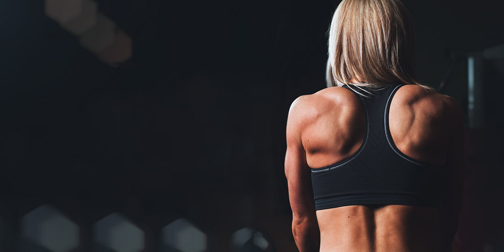 15 Best Health, Fitness & Gym WordPress Plugins