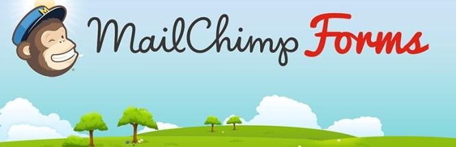 Formulaires MailChimp par MailMunch