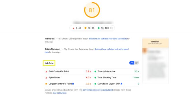 Données du laboratoire Google PageSpeed Insights