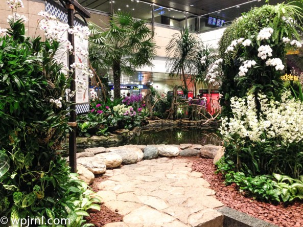 Orchid Garden Singapore Changi Airport -