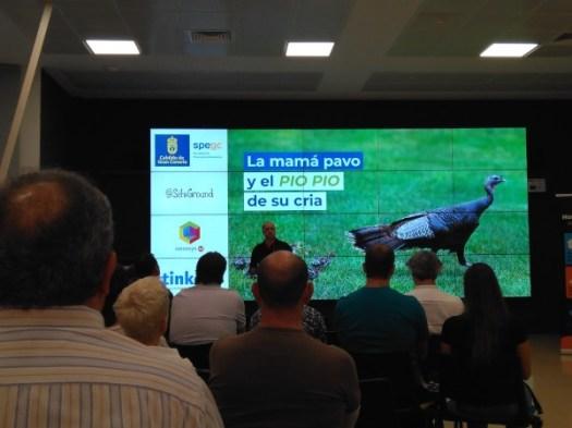 Meetup doble con Nando Pappalardo sobre neuromarketing