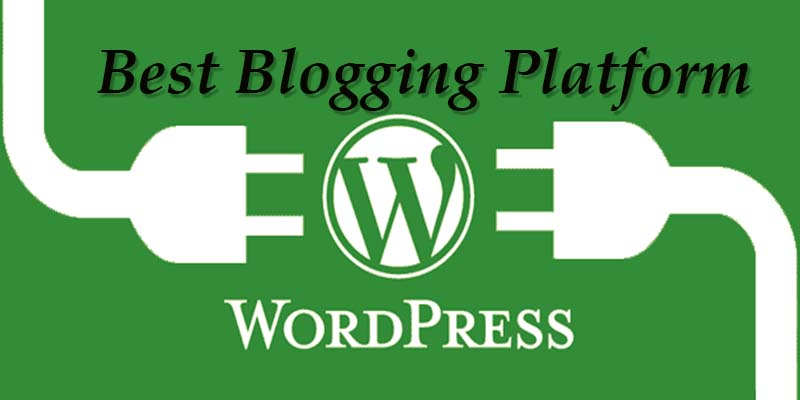 WordPress – It is just more than a blogging platform