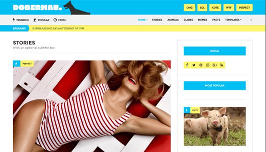 CSS Igniter Doberman WordPress Theme