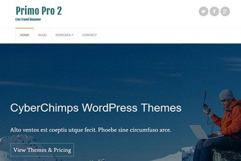 CyberChimps Primo Pro 2 WordPress Theme