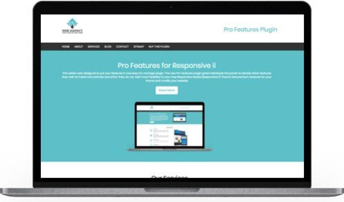 CyberChimps Pro Features WordPress Plugin