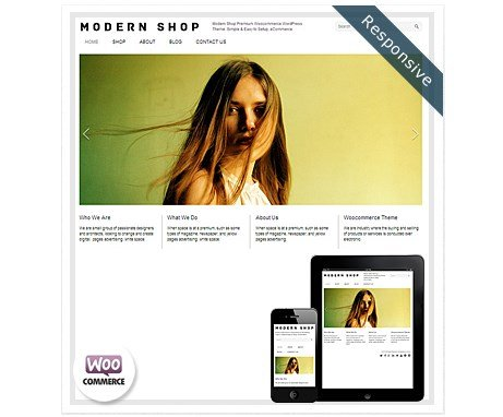 Dessign Modern Shop WooCommerce Themes