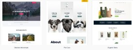 Astra Premium Sites -Ready to Import Starter Websites