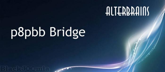ppbb Bridge